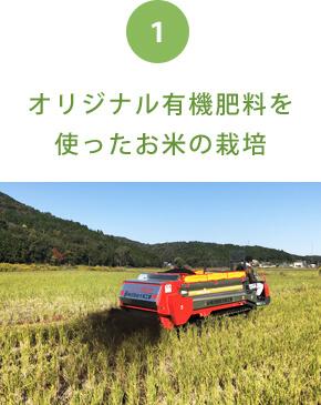 オリジナル有機肥料を使ったお米の栽培